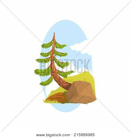 Hand drawn landscape scene with evergreen pine growing behind the rock, blue sky background. Coniferous tree. Colorful forest nature design element for print, game or botany book. Flat cartoon vector.