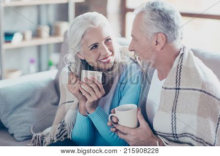 Warm Sweet Peaceful Conversation Between Two  Full Of Happiness Old People Who Are Resting, Relaxing