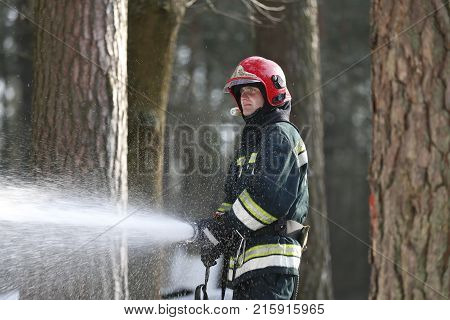 Belarus Gomel 04/06/2017 extinguishing forest fire.BelarusFire man.Extinguish forest fires. Fighting fire