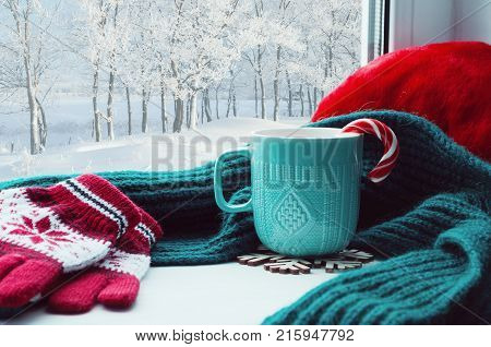 Winter background. Cup with candy cane woolen scarf and red gloves on windowsill and winter forest outside. Winter still life with concept of spending winter time at cozy home, winter composition. Winter background. Festive winter card
