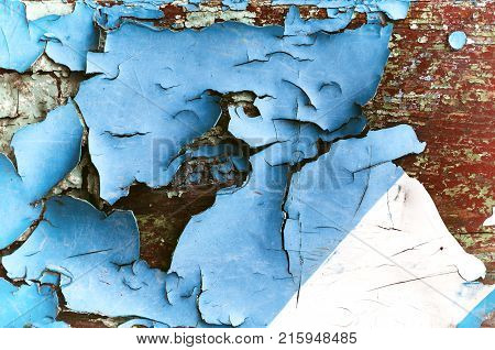 Texture background of blue peeling paint on the wooden texture surface, closeup of peeling paint. Peeling paint texture. Texture of blue peeling paint on the wooden texture surface.