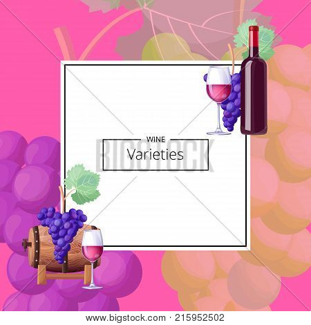 Wine varieties, poster with title sample in rectangular frame in centerpiece, icons of glass, grapes and barrel on vector illustration
