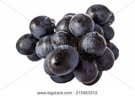 bunch of bright blue grapes covered with drops of water on a white background looks very appetizing