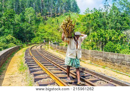 DEMODARA SRI LANKA - DECEMBER 1 2016: The farmer with massive armful of branches on his back goes along the Nine Arch Bridge on December 1 in Demodara.