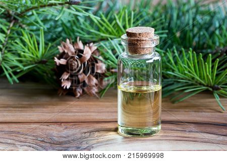 A bottle of Douglas fir essential oil with fresh Douglas fir branches in the background