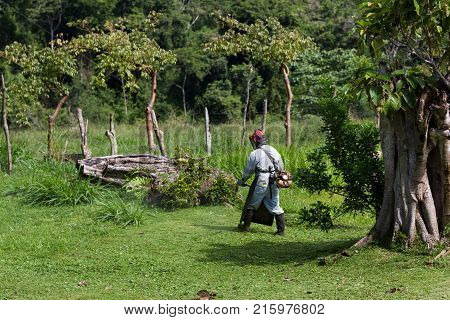 Mowing In Costa Rica
