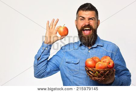 Man With Beard Holds Wicker Bowl With Apple Fruits