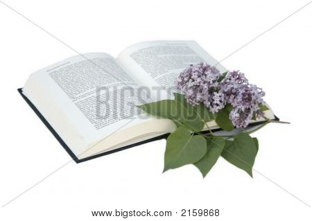 Book And The Flowers