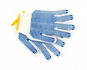 A pair of new pet grooming gloves on a white background. poster