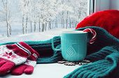 Winter background. Cup with candy cane woolen scarf and red gloves on windowsill and winter forest outside. Winter still life with concept of spending winter time at cozy home, winter composition. Winter background. Festive winter card poster