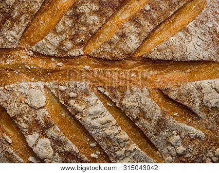 Close Up Roasted Bread Background Texture. Macro Photo, Close Up