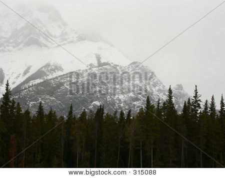 Cascade Mountain Snow Storm