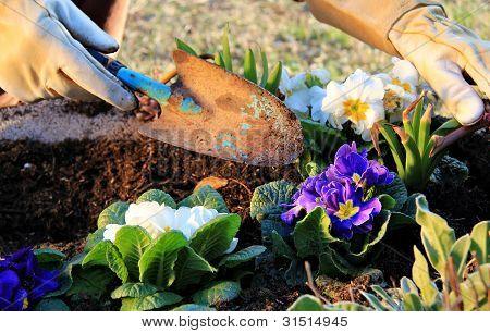 Garden Work Outdoor