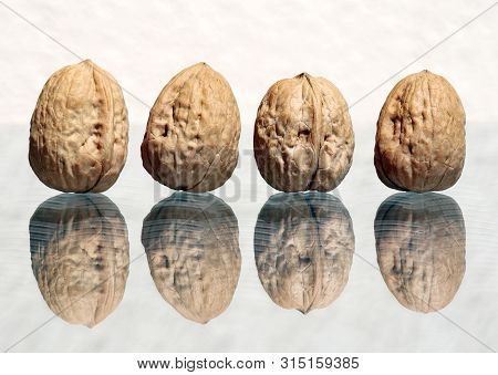 Four Whole Walnuts With Amazing Reflections Against High Key Background  With Copy Space. Choose A F
