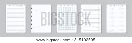Realistic Lined Notepapers. Blank Gridded Notebook Papers For Homework And Exercises. Vector Pads Pa