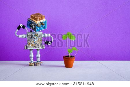Surprised Robot Gardener Looks At A Sprout Of Strawberry Grown In A Flower Pot. Violet Purple Backgr