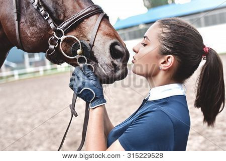 Close Up Hands Of Jockey Woman Hugging A Horse. Young Girl Petting Her Horse In Stable. Equine Thera