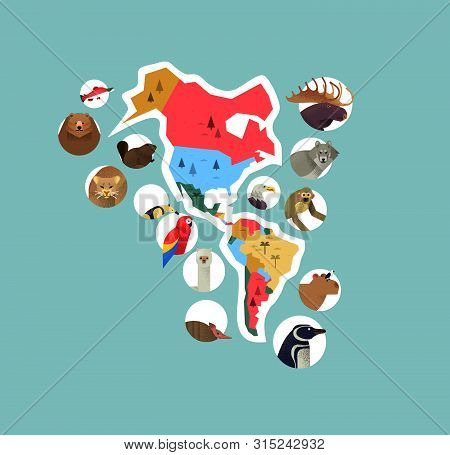 poster of The Americas continent map with wild animals from south and north america. Diverse wildlife icons includes bear, monkey, bird, wolf, exotic fauna.