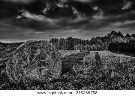 Silage On Spring Meadow With Trees On Background In Bohemian Switzerland