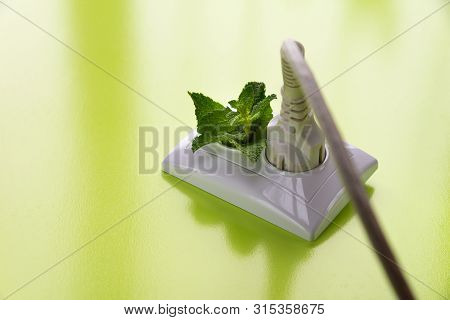 White Wire In Socket And Green Mint Are On The Green Background. International Day Of Energy Saving