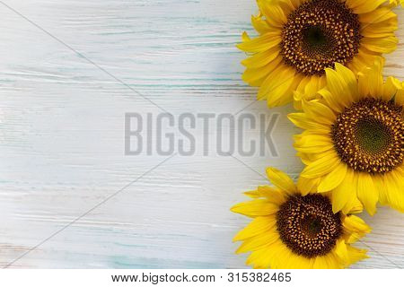 Greeting Card Design With Sunflowers On Gray Wooden Background. Frame For Text With Flowers Of Sunfl