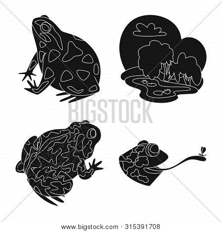 Isolated object of fauna and reptile sign. Set of fauna and anuran vector icon for stock. poster