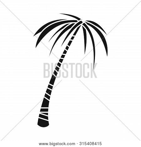 Isolated Object Of Palm And Tall Sign. Set Of Palm And Coco Stock Vector Illustration.