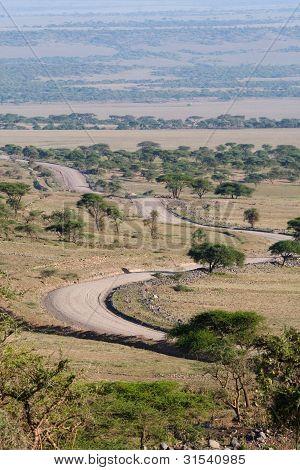 Serengeti-Straße