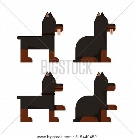 Set Of Flat Icons With Doberman. Pedigree Dog. Sitting And Standing. Vector Illustration.