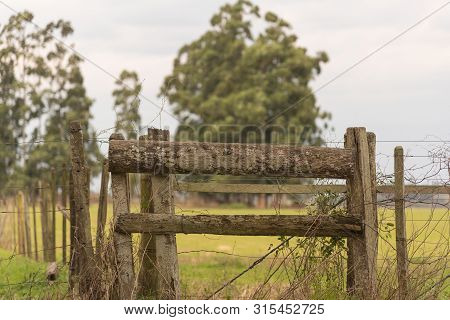 Countryside. Wooden Poles Of Law In Wire De Fazenda. Wire Fence With Wood And Fixing Plots. Wood Art