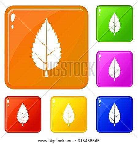 Hornbeam Leaf Icons Set Collection Vector 6 Color Isolated On White Background