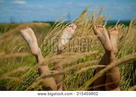 Relaxing In The Nature Woman Legs Between Spikelets And Grass In Field.