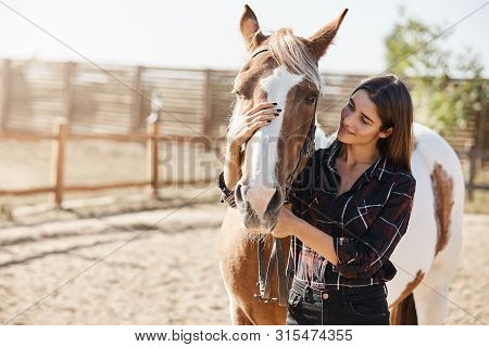 Lovely Caucasian Woman In Checked Shirt, Hugging Horse, Horsewoman Adore Her Pet, Smiling Gently, Gr