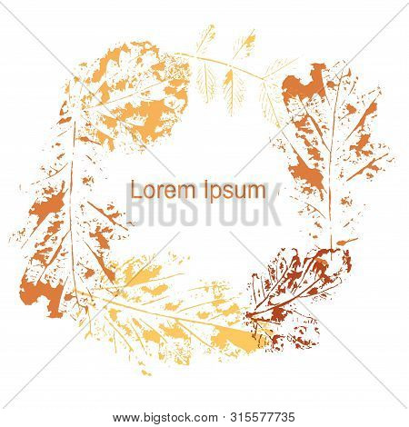 Autumn Print Leaves Background, Lorem Ipsum. Orange Yellow Oak, Mulberry, Hazelnut Vein Leaves On Wh