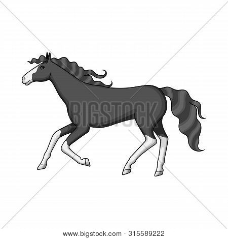 Vector Design Of Steed And Brown Logo. Set Of Steed And Gallop Stock Vector Illustration.
