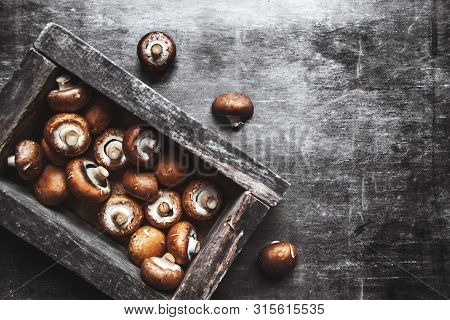 Royal Mushrooms In A Box On A Dark Background. A