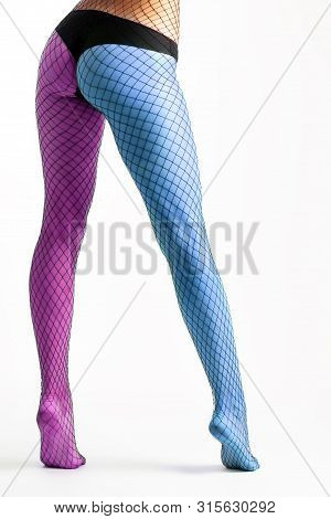CLose up of the slim and beautiful legs in  colorfu; sexy nylon black pantyhose. Woman in hosiery.Concept of beauty woman posing for legs. poster