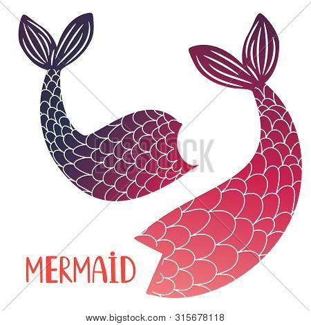 Mermaid Tails Vector Isolated On White Background. Mermaid Tail Sea Illustration Collection