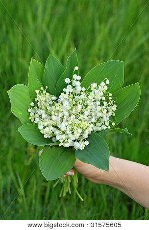 Lily of the valley (convallaria majalis) bouquet in hand poster