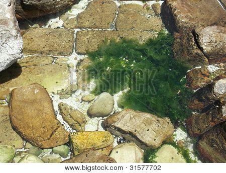 Rock pool pattern
