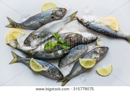 Bluefish Of Black Sea With Lemon And Mint For Marinade On White Background. Fish Pattern. Top View.