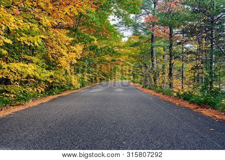 Autumn scene with road in in White Mountain National Forest, New Hampshire, USA. Fall in New England.