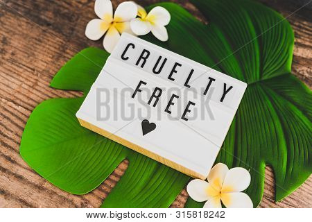 Cruelty Free Message On Lightbox Vegan Products And Ethics