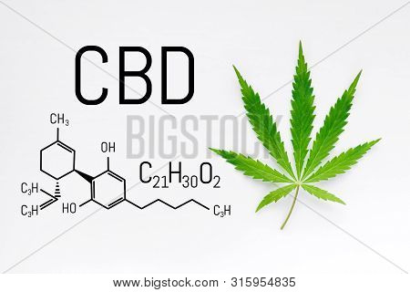 Cbd Cannabis Cream With Marijuana Green Leaf. Molecular Structure Medical Chemistry Formula Cannabis
