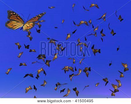 Monarch Butterflies Migration - 3D Render