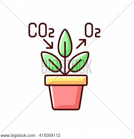 Air Purifying Plant Rgb Color Icon. Plants Clean The Air Through The Process Of Photosynthesis. Oxyg