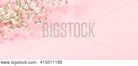 Pastel Pink Festive Banner With Gentle White Gypsophila Flowers. Copy Space For Text.
