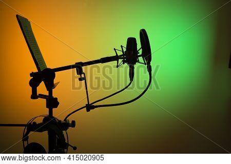 Voiceover Studio Microphone