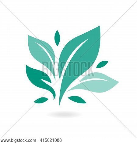Tree Leaf Ecology Nature Vector Icon. Eco Icon Green Leaf Vector Illustration Isolated. Plant, Tree