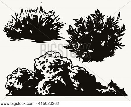 Bushes Vintage Concept In Black And White Colors Isolated Vector Illustration